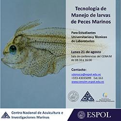 curso_peces