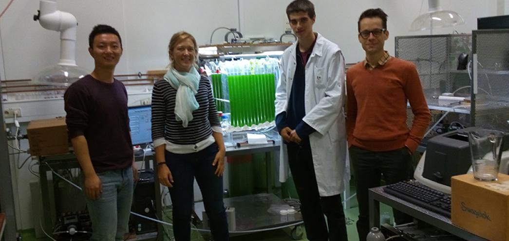 De izquierda a derecha: Dr. Yixing Sui, Dra. Sofie Van Den Hende, Dr. Erik Van Eynde, Dr. Siegfried Vlaeminck en el laboratorio
